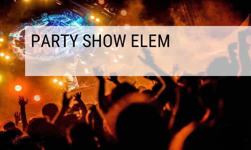 Hestia tűztánc party show elem